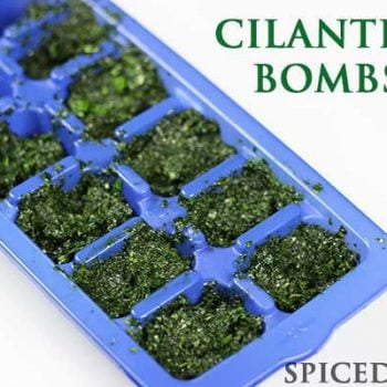 Cilantro Bombs--the perfect use for extra cilantro!