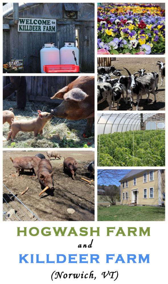 Hogwash Farm and Killdeer Farm (Norwich, VT)