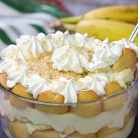 """This Homemade Southern Banana Pudding is a classic dessert...and it's super easy to make! It'll leave your family and friends begging for your """"secret family recipe!"""""""