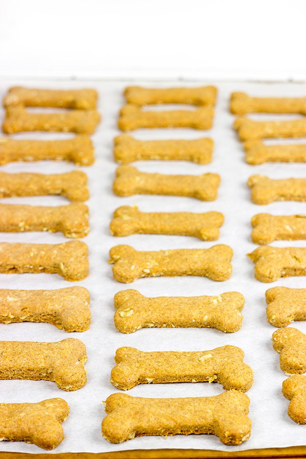These Peanut Butter Oat Dog Bones are easy...and sure to get a high-five from your 4-legged friends! #EveryDayCare