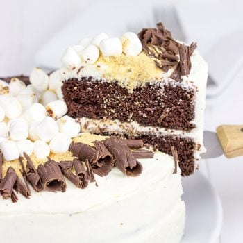 Who needs a campfire when you have this S'more Chocolate Marshmallow Cake?