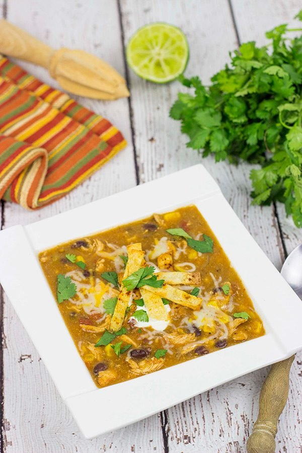 Grab a hot bowl of this Chicken Enchilada Soup for lunch (or dinner) today...it's the perfect way to warm up on these cold winter days!