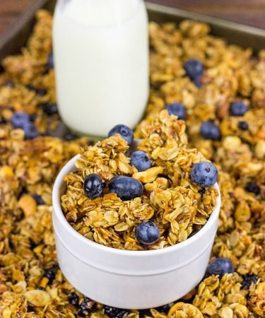 This Blueberry Cashew Granola makes one heck of a tasty (and easy) breakfast for busy, weekday mornings!
