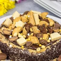 Summer is just around the corner! Celebrate with a slice of this Chocolate Peanut Butter Ice Cream Freak Cake!