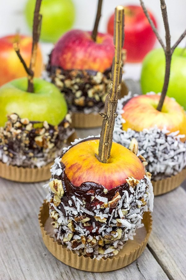 Celebrate Autumn with a visit to a nearby apple orchard and a homemade batch of these Chocolate Dipped Apples!