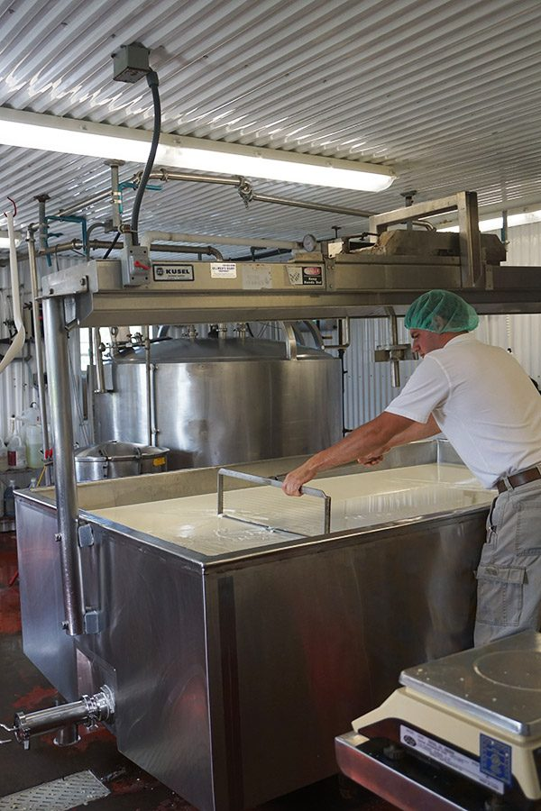 New York Dairy Tour (Finger Lakes region)