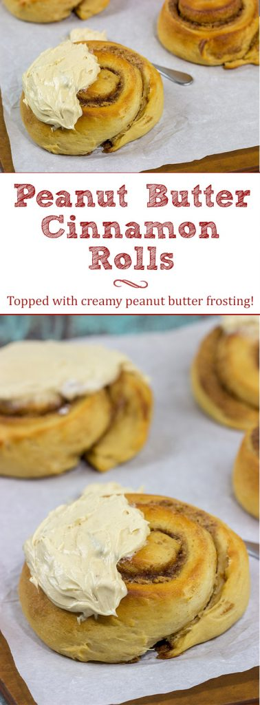 If you love peanut butter, then these Peanut Butter Cinnamon Rolls will be a new favorite! Topped with a whipped peanut butter frosting, these rolls are a tasty breakfast or dessert!