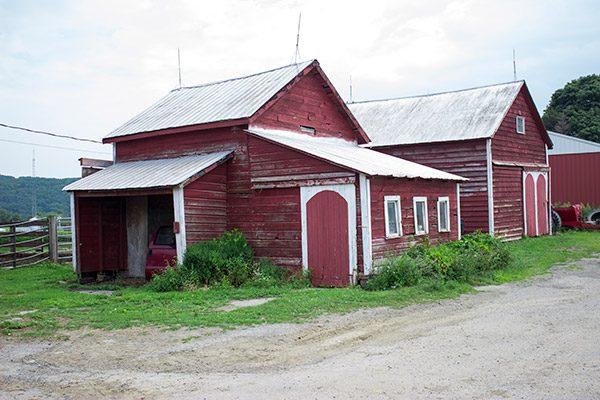 Dellavale Farm: a Cabot farm in Pattersonville, NY