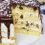The BEST Easy Chocolate Chip Cake
