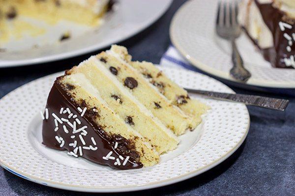 slice of chocolate chip cake