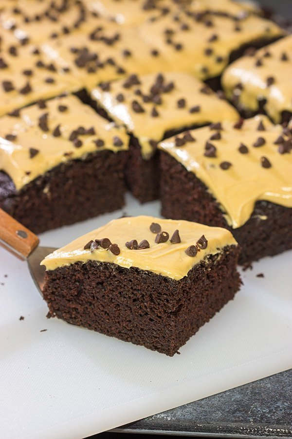 This Chocolate Cake with Peanut Butter Frosting is moist, delicious and super easy to make! Plus, you probably have all of the ingredients in your pantry right now!